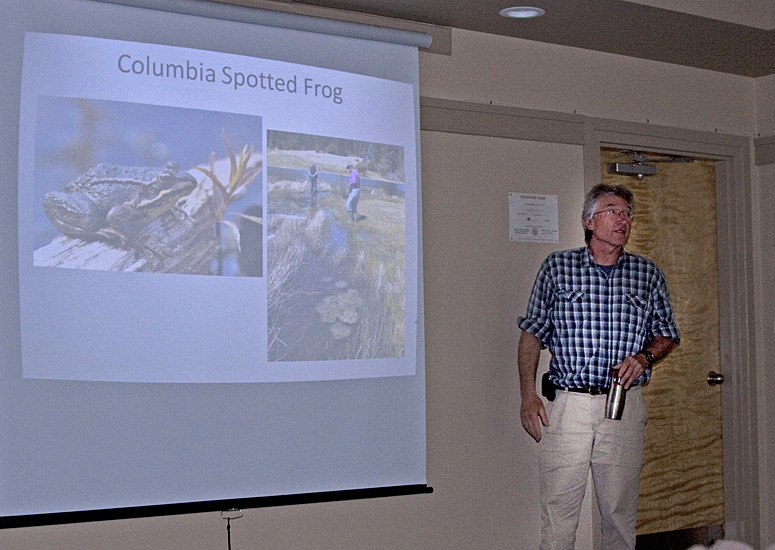 Lennart Sopuck of Biolinx Environmental Research leads part of our amphibian workshop - 25 May 2013.  Photo: Alan Burger