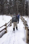Snowshoeing at the start of the interpretive trail