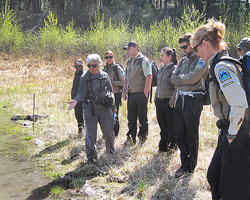 BC Parks personnel learnabout the Western Toad project at Kentucky-Alleyne Provincial Park.