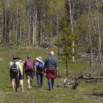 Nicola Naturalists along the Harmon Interpretive Forest trail.  Photo: © Alan Burger