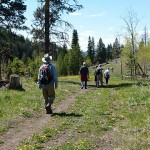 Naturalists on Harmon trail