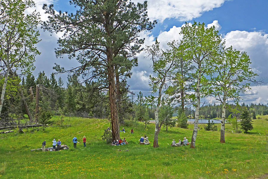 Lunch under the Ponderosa Pines and Tembling Aspens at Lundbom Common. Photo: © Alan Burger