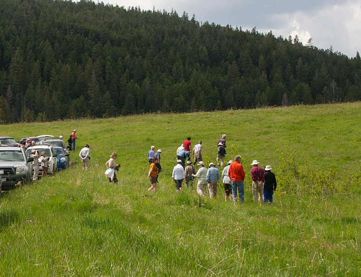 Exploring the grasslands at Lundbom Common.  Photo: © Robert Bear