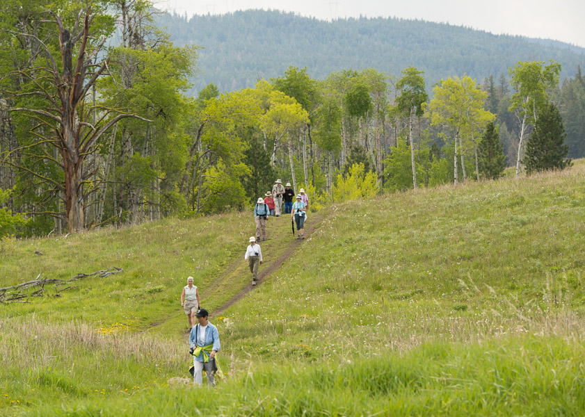 Hiking in the Lundbom Common. Photo: © Ian Routley.