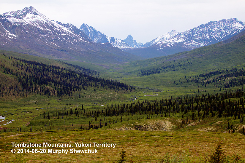 Tombstone Mountains, Yukon Territory. Photo: © Murphy Shechuk